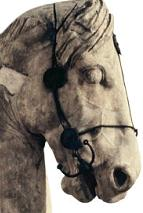 Colossal horse from the Mausoleum at Halikarnassos (one of the Seven Wonders of the Ancient World)